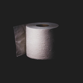 The Toilet Paper Wars