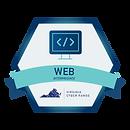 WebIntermediateV1.png