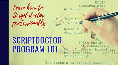 scriptdoctor program cover.JPG