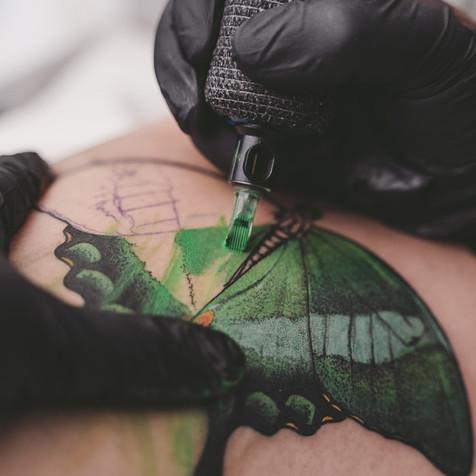 Butterfly_0033.jpg