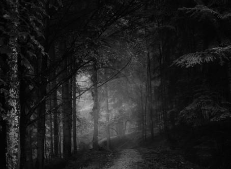 We're not out of the woods yet /        On n'est pas encore tirés d'affaire