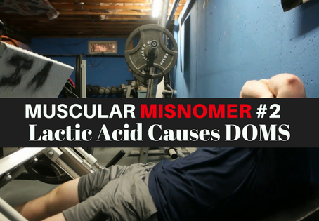 Muscular Misnomer #2  Lactic Acid Causes DOMS