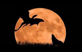 moon-3157219_1920.jpg