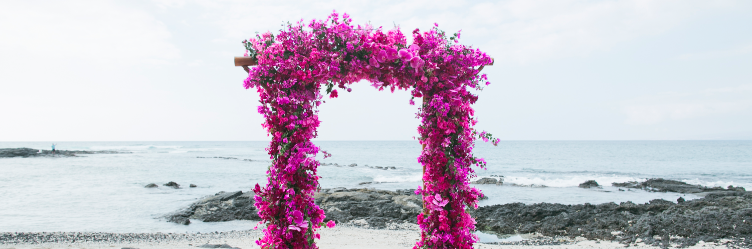 Purple bougainvillea arch Coordination by Jots of Thoughts