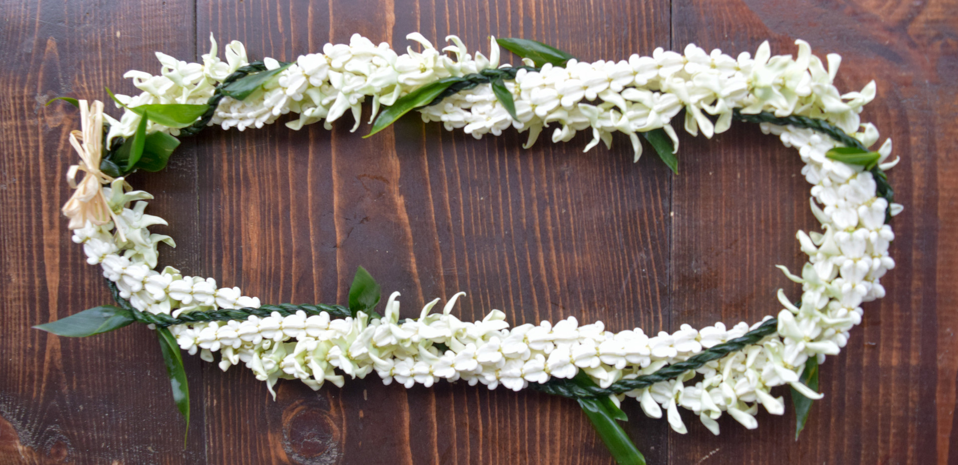 Quadruple strand ti leaf and crown flower twist lei