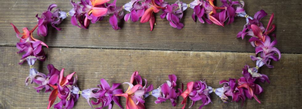 Crown, plumeria and orchid mix ei