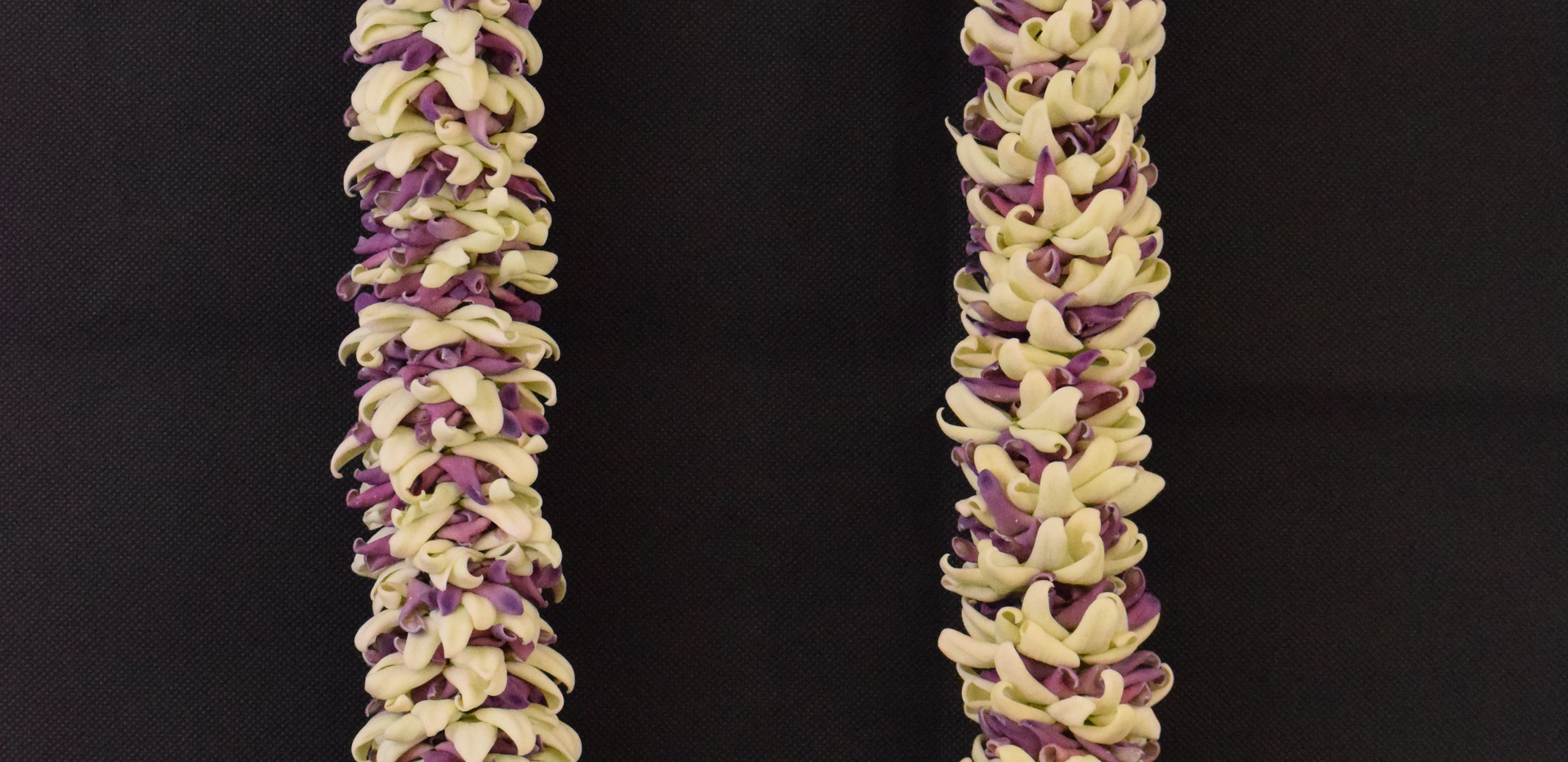 Crown flower petal lei