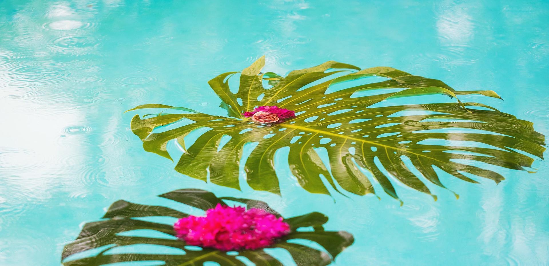 Floating pool decor