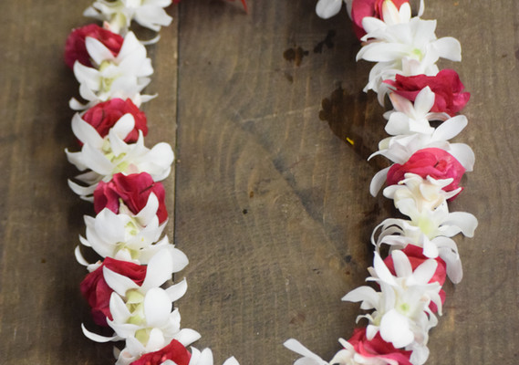 Full orchid white orchid lei with tucks of tuberose and bougainvillea clusters