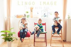 Lingo image_寵物34