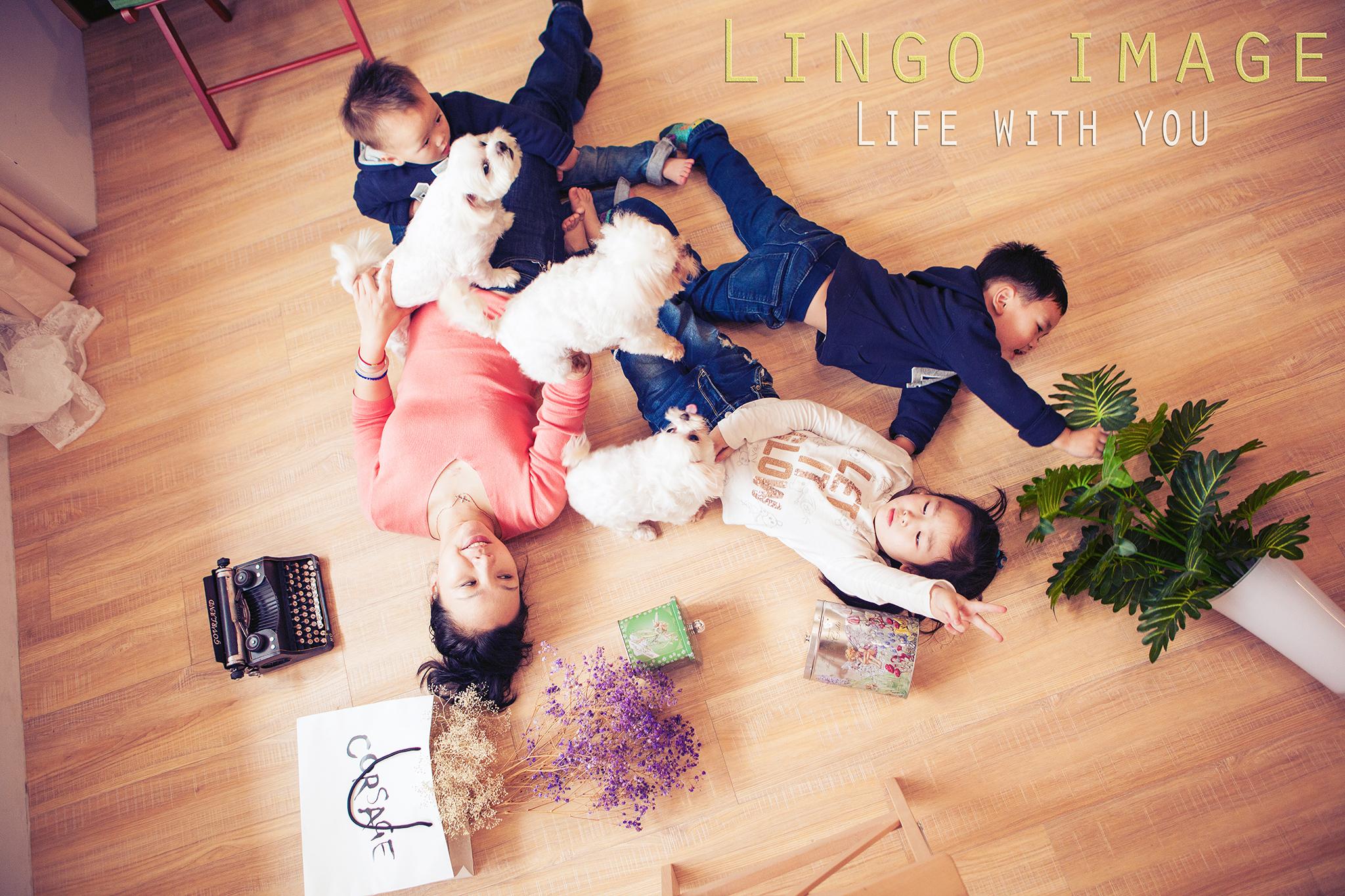 Lingo image_寵物39
