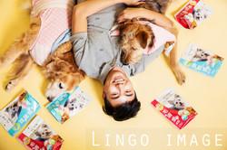 Lingo image_代言20