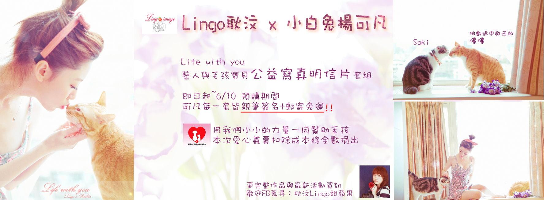lingorabbit海報