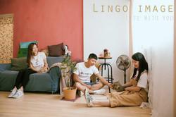 Lingo image_寵物72