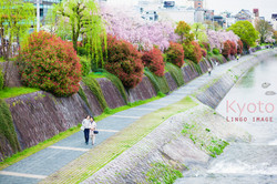 Lingo image_日本7