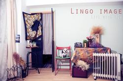 Lingo image_寵物18