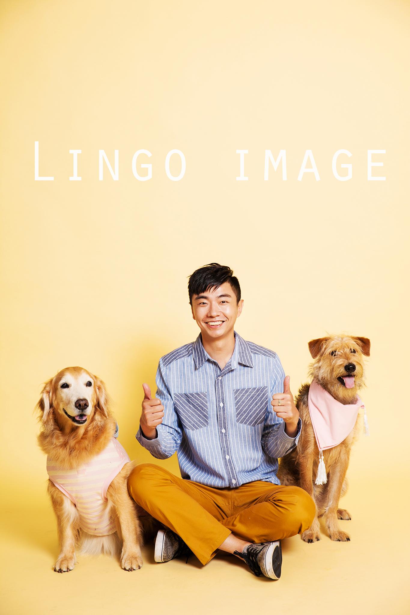 Lingo image_代言14