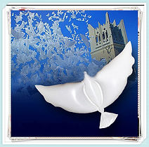 dove blloos party favors memorials anniversary sky lantern chinese lanterns