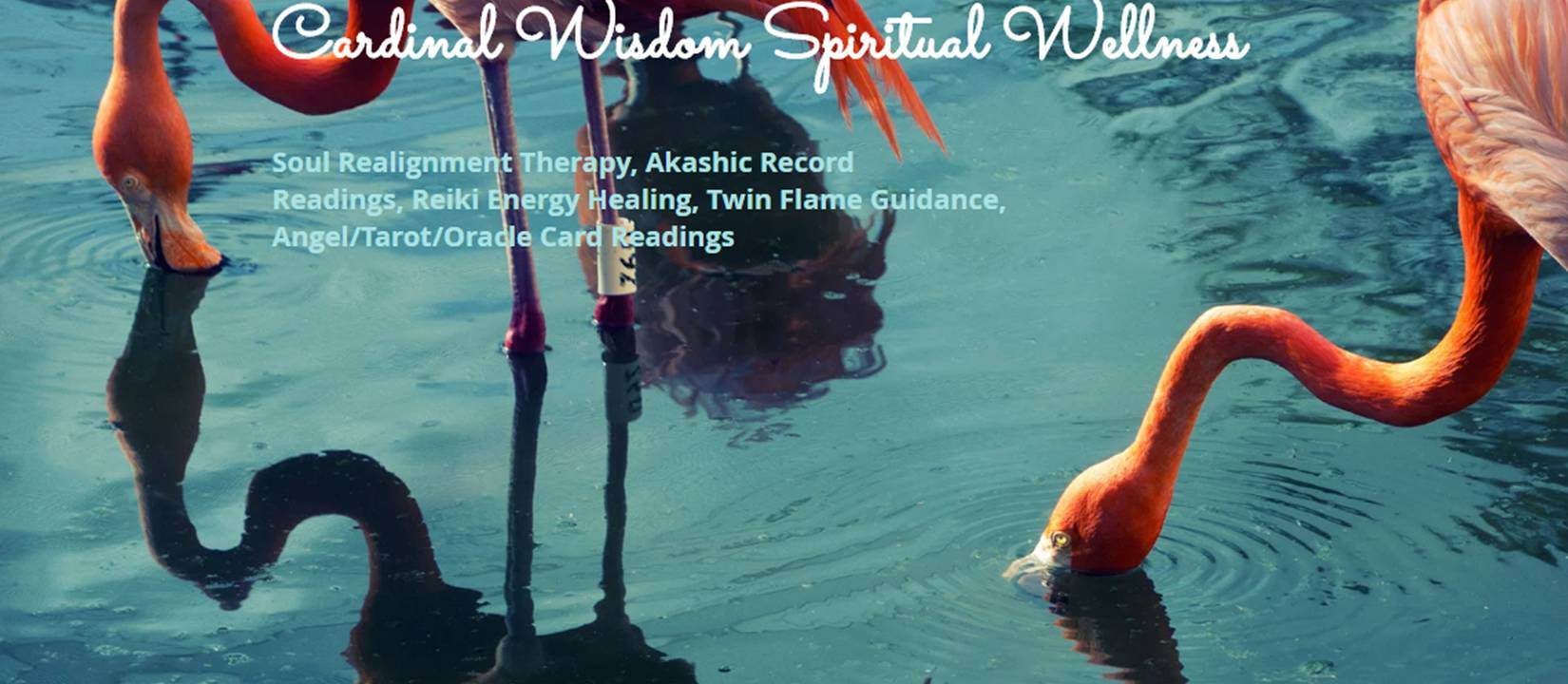 Akashic Records & Soul Healing in West Virginia