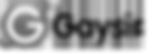 Gaysir Logo