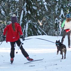 BarkerBeiner2019-Marsha Snow 26.jpg