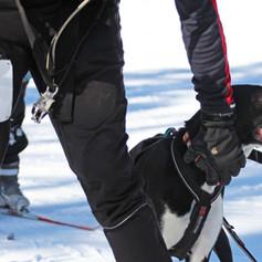BarkerBeiner2019-Marsha Snow 32.jpg