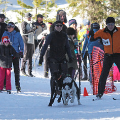 BarkerBeiner2019-Marsha Snow 58.jpg
