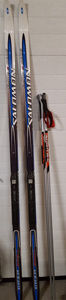 skis-poles schlaich feb23-2019.jpg