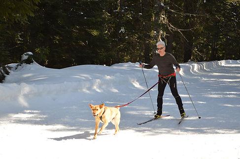 programs - skijor.jpg