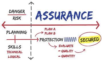 Technical Assurance small.jpg