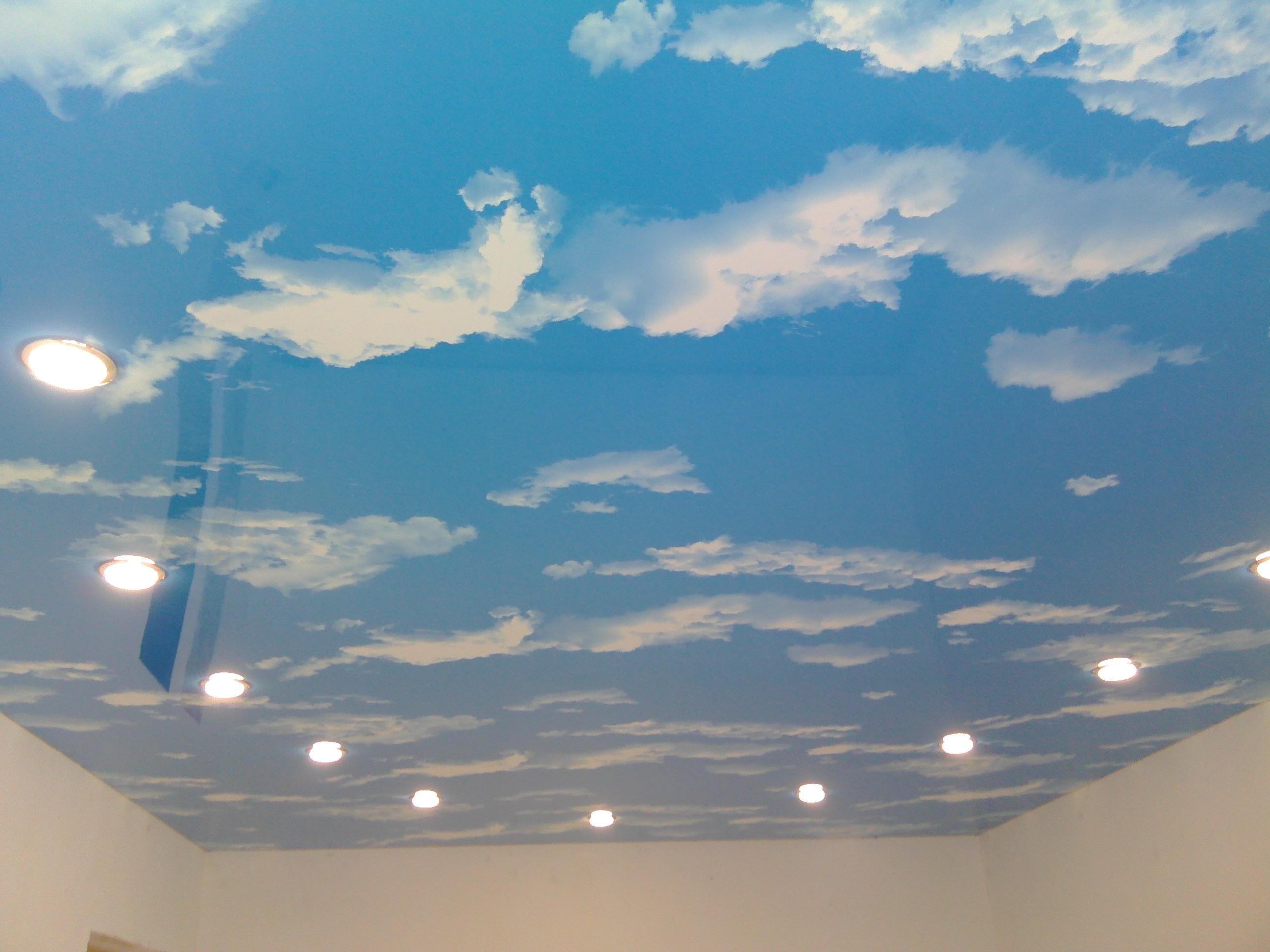 достаточно неприхотливы, натяжные потолки фотопечать облака однокомнатную квартиру екатеринбурге