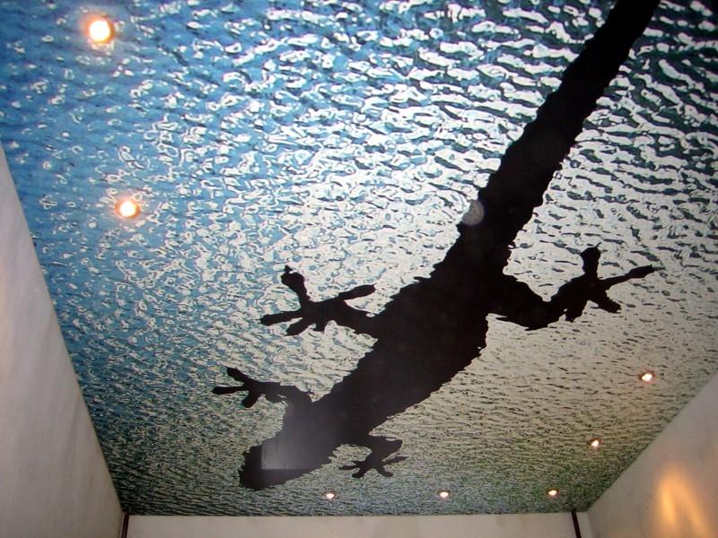 Натяжные потолки - с фотопечатью.jpg