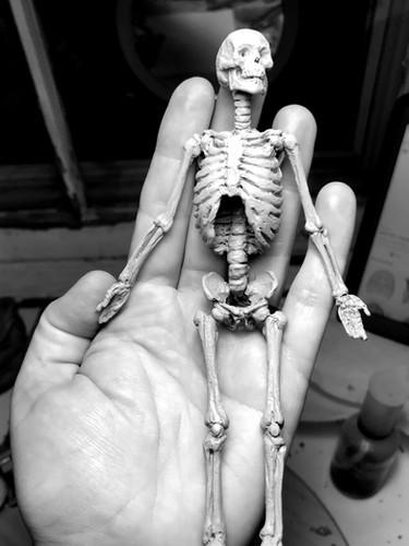 """Cullars Skeleton"""