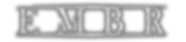 embr_logo_wht_shadow.png