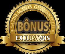 Bonus-exclusivo-termo-em-ingles-600x503.