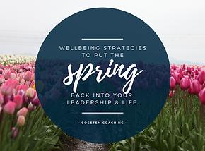 Spring program.png