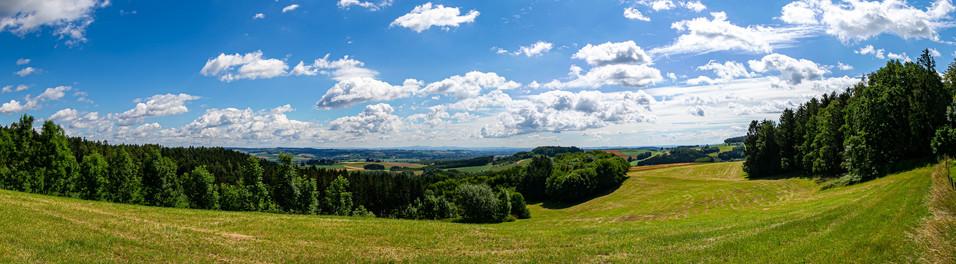 Blick in den Bayerwald