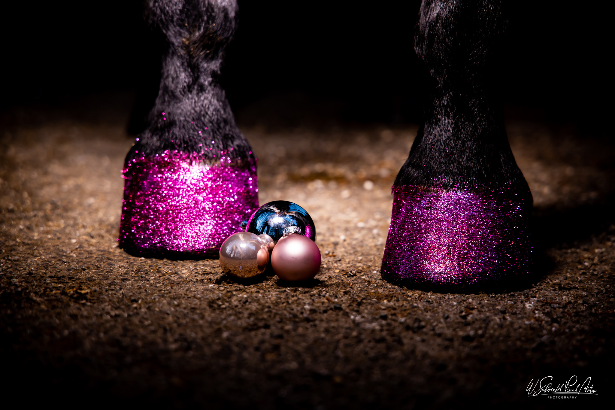 Weihnachts-Shooting