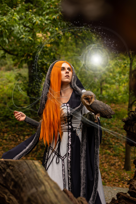 Magie mit Falke