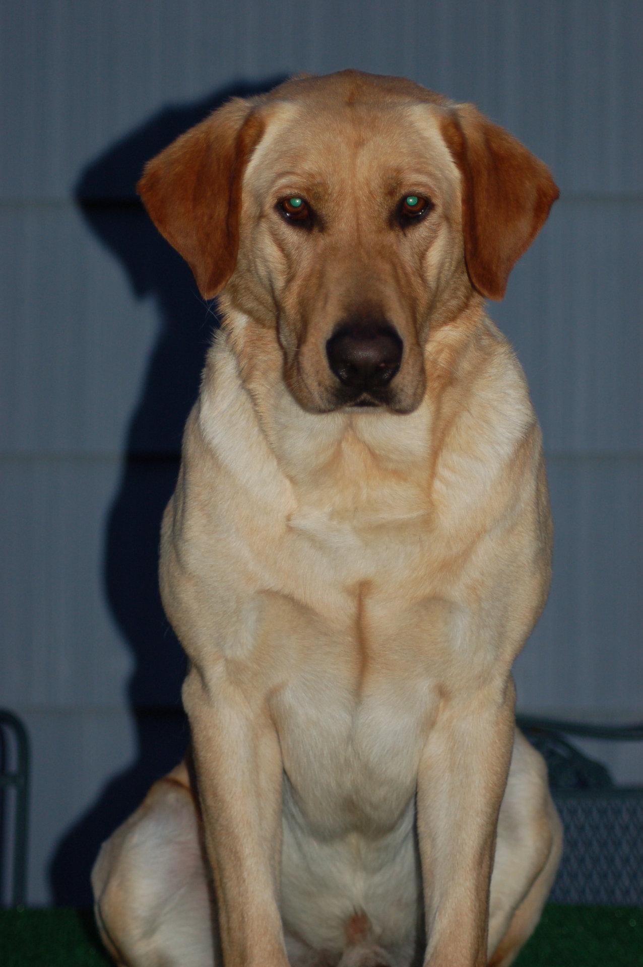 Otis+3.19.2012+8
