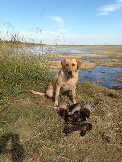 otis+duck+hunting+4