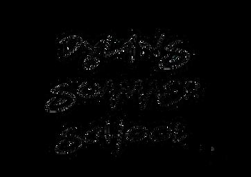 Dylans Summer School logo copy.png