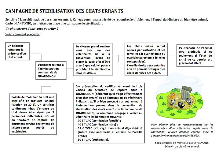 Campagne sterilisation des chats errants