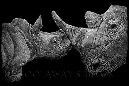 Rhino Mother & Baby