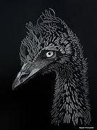 Emu scraperboard