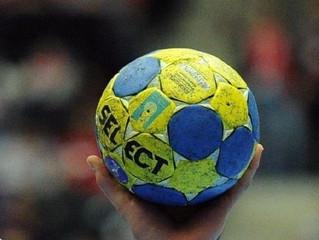 Synthèse des coachs - Championnat (WE du 20/01/18)