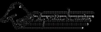 apdm noir transparent.png