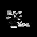Spaze Ventures Logo.png