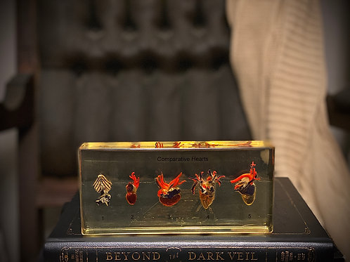 Authentic Antique comparative Hearts