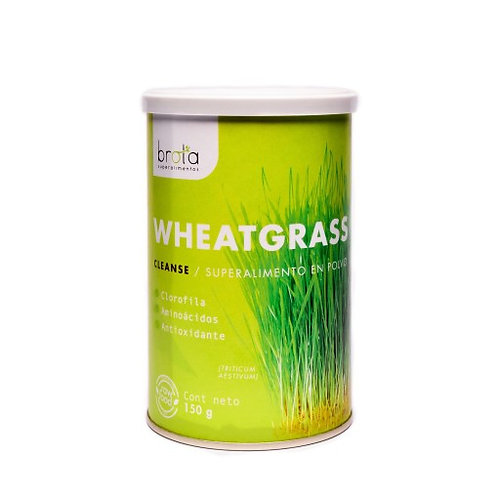 Wheatgrass en polvo